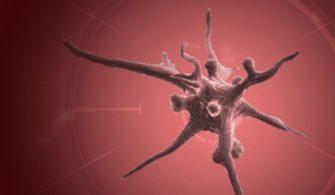 Plague INC, Corona Virüsü yüzünden Çin'de Yasaklandı!